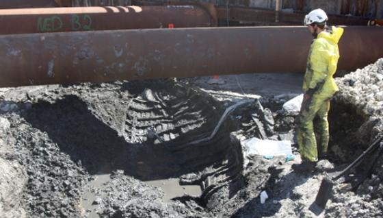 Arkæolog betragter udgravet hækjolle